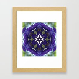 Blue columbine mandala 2 Framed Art Print