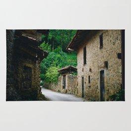 Cottages (Color) Rug