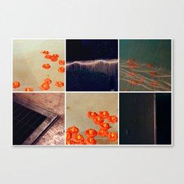 3046 Canvas Print
