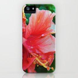 Raindrops on Hibiscuses iPhone Case