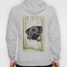 beautiful dog Hoody