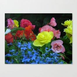 Flower pic 8 Canvas Print