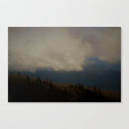 Faded Pines Canvas Print