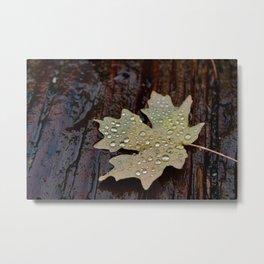 Rainy Autumn Metal Print