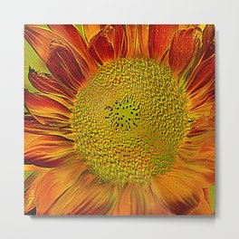 The flower of sun   (This Artwork is a collaboration with the talented artist Agostino Lo coco) Metal Print