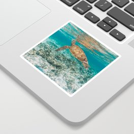 Turtle ii Sticker