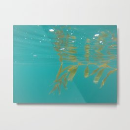 RB Kelp I Metal Print
