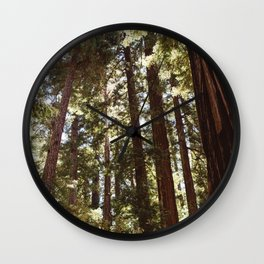 Redwood Forest XII Wall Clock