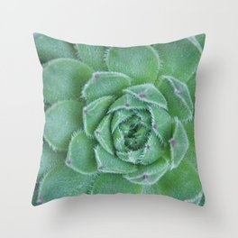 Sempervivum Succulent  Throw Pillow