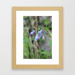 The Bluebells Framed Art Print