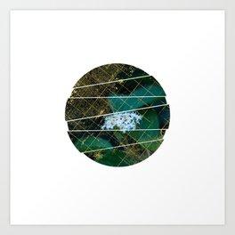 Subtly Flourishing - Circle Art Print