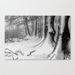 Winter Wonderland 2 Canvas Print