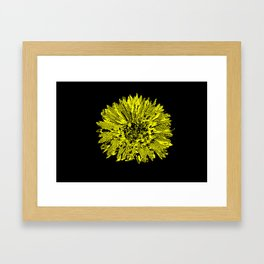 Stamped Wildflower in Yellow and Black Framed Art Print