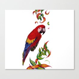 red parrot with rainbow leaves Canvas Print