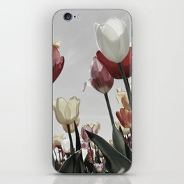 Tulip flowers iPhone Skin