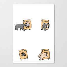 washing bears Canvas Print