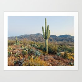 Spring in the Desert Art Print