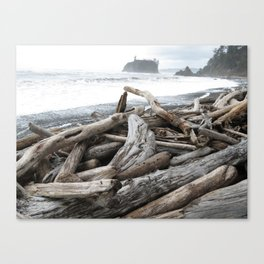 Stormy Ruby Beach Canvas Print