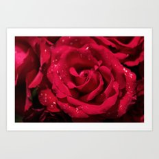 Red roses - Red Rose Photography Art Print