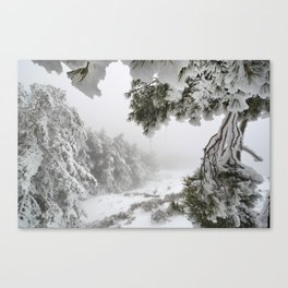 """Snowy forest"". At the foggy mountains... Canvas Print"