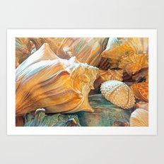 Shell Game Art Art Print