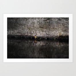 The little anatinae Art Print
