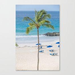Go Coconuts Canvas Print