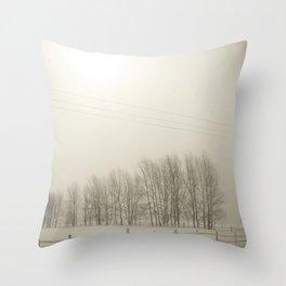 Winter 4 Throw Pillow