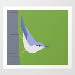 Tree Creeper  Art Print