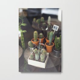Cactus Window Shopping Metal Print