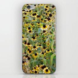 Sundazed iPhone Skin