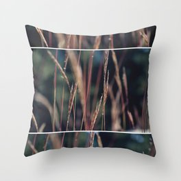 Lookout Mountain  Throw Pillow
