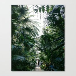 IN THE JUNGLE #2 Canvas Print