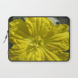 beauty in the mundane - ants and the luffa flowers Laptop Sleeve