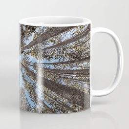 Yellowstone National Park - Lodgepole Forest Coffee Mug