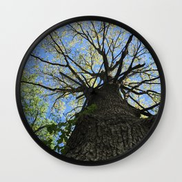 Forest Therapy Wall Clock