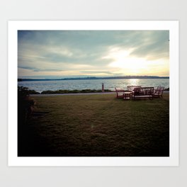 Lake Washington Shoreline Art Print