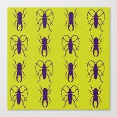 Beetle Grid V5 Canvas Print