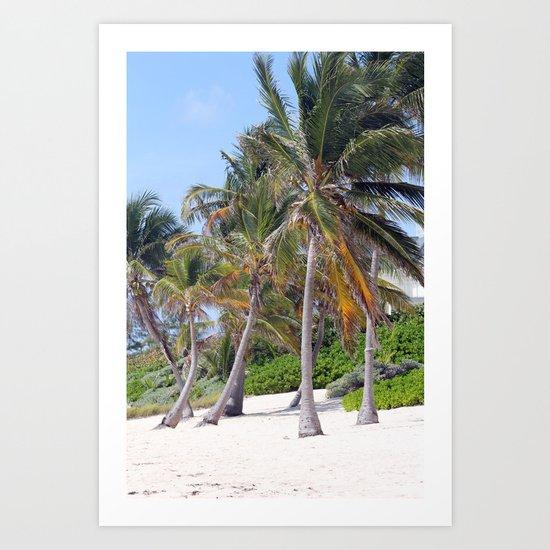 Palmtrees Art Print