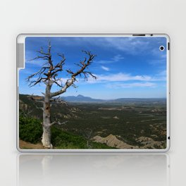 Overlooking The Valley Laptop & iPad Skin