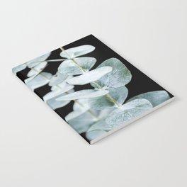 Eucalyptus Leaves on a Black Sky Notebook