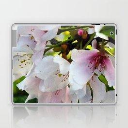 Cheery Cherry Blossoms Laptop & iPad Skin