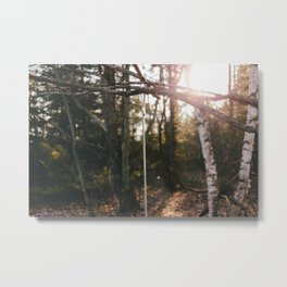 Peace in the Woods Metal Print