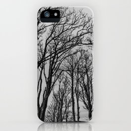 Winter Foliage iPhone Case