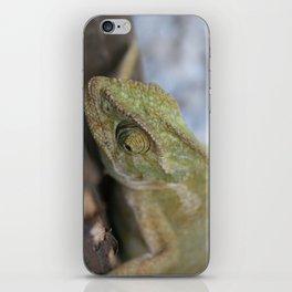 Wild Chameleon In Green Shades iPhone Skin