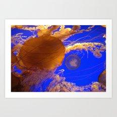 Amazing Jellyfish Art Print