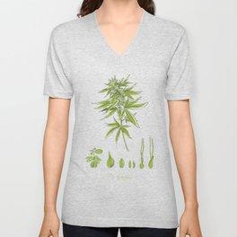 Cannabis Sativa Unisex V-Neck