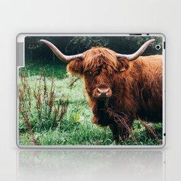 Scottish Highland Cattle Laptop & iPad Skin