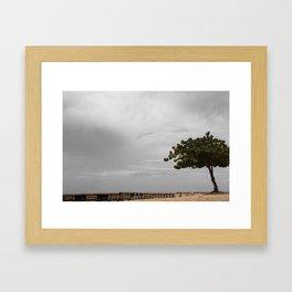 Sandy Tree Framed Art Print