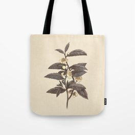 Late Bloom  Tote Bag